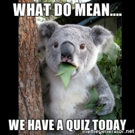 what-do-mean-we-have-a-quiz-today