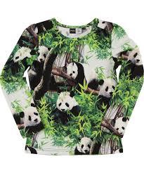 trendy panda