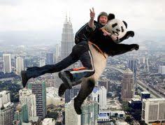 parachute panda